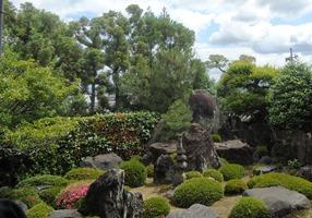 【季節の旅】茶源郷 和束の茶摘体験と一休寺特別拝観