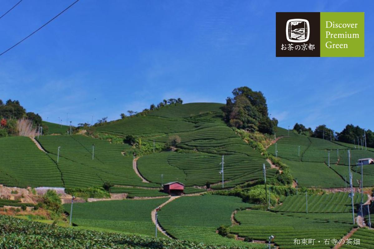 和束町・石山の茶畑